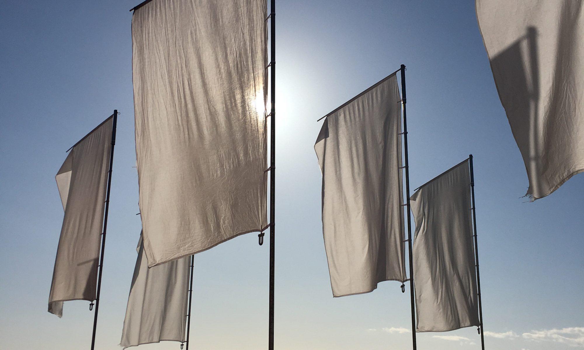 beachflag design